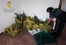 La Guardia Civil de Cuenca investiga a dos personas por cultivo de drogas en la mancha conquense