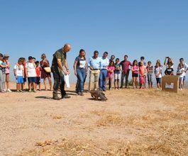 La Junta recupera al año 2.500 aves en los centros de Castilla-La Mancha