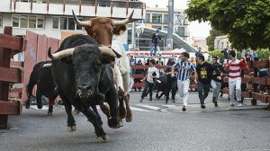 Once personas asistidas por quemaduras en los toros de fuego en Guadalajara.., y dos mujeres detenidas por conducir pasadas de copas