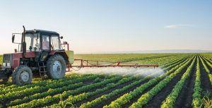 Unión de Uniones de Castilla-La Mancha anuncia que la futura composición del Consejo Asesor es una cacicada del Consejero de Agricultura