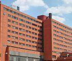 Cuatro miembros de una familia de Guadalajara, intoxicados y en el Hospital por comer por setas