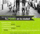 Quedan plazas para los talleres de cultivo en macetas y adiestramiento canino, organizados por el Ayuntamiento de Guadalajara
