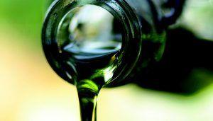 Unión de Uniones resalta la caída de producción del 7,6% de aceite de oliva en el mundo en la campaña 2018-2019