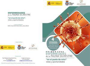 El 'I Foro sobre enfermedades de fauna silvestre' se celebrará el 4 de diciembre en Madrid