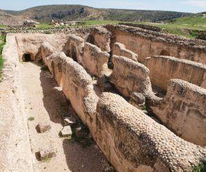 El Gobierno regional estudia la declaración como parque arqueológico del Yacimiento Romano de Valeria ante la entidad de los hallazgos