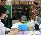"""Orlena de Miguel """"La Ley de medidas urgentes de Cs para la mejora del sistema de ciencia tiene como objetivo garantizar la continuidad del personal en estos centros de investigación"""""""