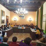 Pleno Infantil en Sigüenza en el Día Universal del Niño