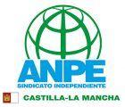 ANPE afirma que la nueva propuesta de reforma educativa es sólo una contrarreforma de la LOMCE