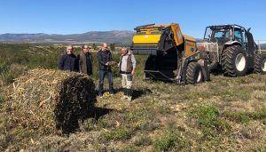 La Junta colabora con el Centro nacional de Desarrollo de Energías Renovables en un proyecto piloto para prevenir incendios forestales
