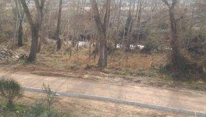 Ahora Guadalajara se suma a las acciones en defensa  de la ribera del Henares promovidas por grupos ecologistas