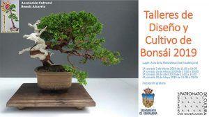 Talleres de Diseño y Cultivo de Bonsái