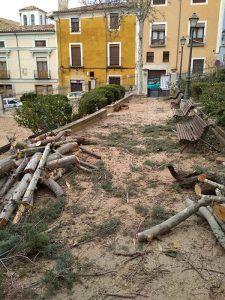 Cs Cuenca lamenta la tala de árboles y la inactividad del Consejo de Medio Ambiente durante la legislatura