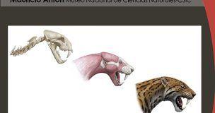 El Museo de Paleontología dedica la tercera de sus conferencias científicas a la restauración paleontológica