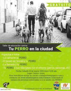 El sábado 16 de marzo nuevo taller de educación canina en Guadalajara
