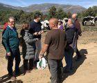 Junta y ganaderos de Guadalajara trabajan conjuntamente para mantener los cortafuegos gracias al pastoreo intensivo