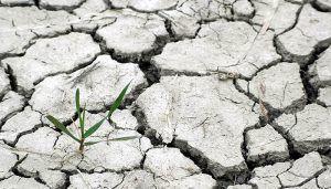Una jornada reunirá en Cuenca a periodistas para reflexionar sobre la nueva realidad informativa de los problemas ambientales
