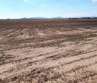 Unión de Uniones reivindica una mejor gestión de los recursos hídricos y denuncia el avance de los daños por sequía