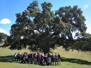 Bosque de oportunidades, un proyecto que formará a unas 150 personas sobre el medio natural y el sector forestal en la provincia de Guadalajara