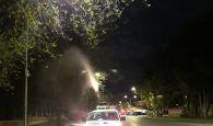 El Ayuntamiento de Guadalajara declara la guerra a los mosquitos y  otros insectos