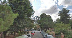 Cae un pino piñonero de grandes dimensiones sobre tes vehículos en la Ronda de San Antonio de Guadalajara
