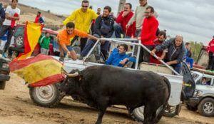 Ecologistas en Acción quiere que este año en Guadalajara se cancelen los encierros