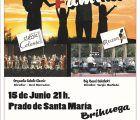 La Asociación Cultural Gentes de Brihuega ofrece este sábado una jornada musical a cargo de la Fundación Orquesta Sinfónica Chamartín