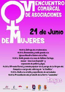 VI Encuentro Comarcal de Asociaciones de Mujeres en Tinajas