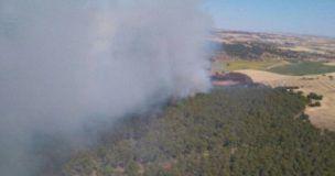 Cinco medios y 21 personas luchan contra el fuego en un incendio declarado en un pinar en Carrascosa