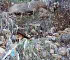Cuenca, En Marcha! preguntará al alcalde sobre los residuos hospitalarios aparecidos en el Júcar