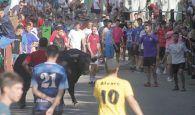 Encierro por la plaza y la calle Valdemoma, con dos novillos que dieron juego desigual en Cabanillas