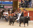 Bonito broche para el último encierro de las Ferias y Fiestas de Guadalajara 2019, buenas carreras y ninguna incidencia