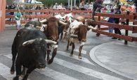 El segundo encierro de las Ferias de Guadalajara transcurre sin incidencias de gravedad