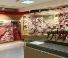 La Diputación de Cuenca reabre el centro de interpretación del yacimiento de Lo Hueco en Fuentes