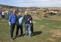 Castilla-La Mancha inicia mañana el pago de más de 32 millones de euros de la PAC del pago básico, verde y régimen de jóvenes agricultores de Guadalajara