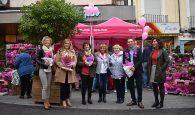 El Programa de Detección Precoz del Cáncer de Mama ha atendido a 9.798 mujeres de Cuenca en 2019