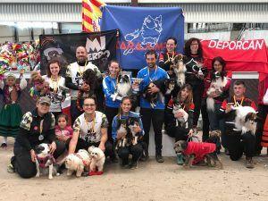 Nuevo récord de participación en la sexta edición del Campeonato de España de Agility