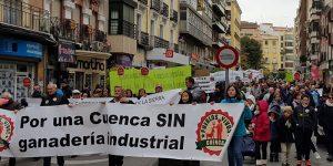 Pueblos Vivos vuelve a decir no a las macrogranjas de cerdos en Cuenca