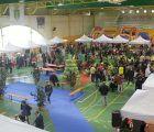 La Feria del Comercio de Cabanillas cierra su edición más multitudinaria