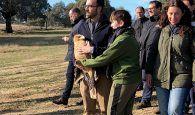 La Junta prevé la actualización y renovación de los planes de recuperación de las especies más emblemáticas de la región