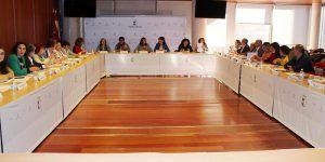El Gobierno de Castilla-La Mancha agradece al Consejo Regional de la Mujer el aval para mejorar las ayudas de orfandad a víctimas de violencia de género
