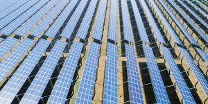 Luz verde a las plantas solares fotovoltaicas 'Torija IV' y 'Las Alberizas II y III' en Torija