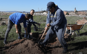 Alcocer planta 100 árboles en solo un fin de semana