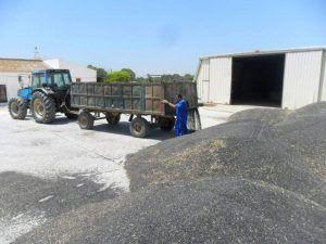 ASAJA denuncia que Agricultura dejará fuera a más de mil agricultores y ganaderos que solicitaron ayudas para modernizar sus explotaciones en Castilla-La Mancha
