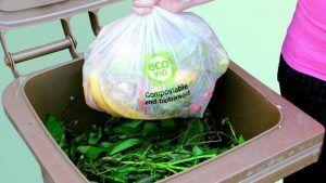 BASF y Fabbri Group desarrollan un film estirable, compostable y certificado para el envasado de alimentos frescos