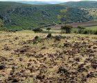 Investigadores del grupo Geovol de la UCLM darán a conocer mañana sábado en Madrid los volcanes del Campo de Calatrava