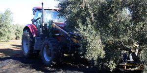 Castilla-La Mancha ha abonado ya 555 millones de euros de ayudas de la PAC con el nuevo pago realizado hoy a 5.000 agricultores y ganaderos
