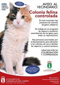 Nace en Cabanillas la asociación Ronroneos Felices, que se hará cargo del control ético de las colonias felinas
