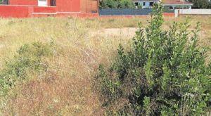 El Ayuntamiento de Cabanillas recuerda la obligación de desbrozar parcelas particulares