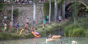 Trillo suspende su Feria Chica, incluidas las Vacas por el Tajo, a causa del COVID-19