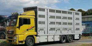 Sanidad vuelve a establecer los tiempos de descanso durante el transporte de animales tras el Covid-19